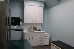 large dog exam room
