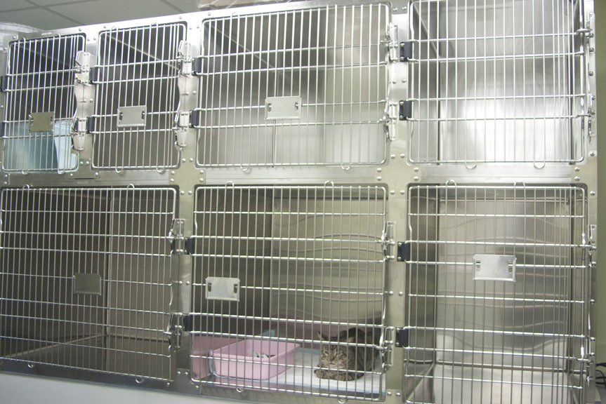 Kennel Area
